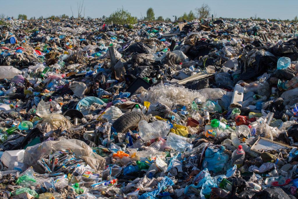 полигон ТБО Краснознаменск свалка мусор