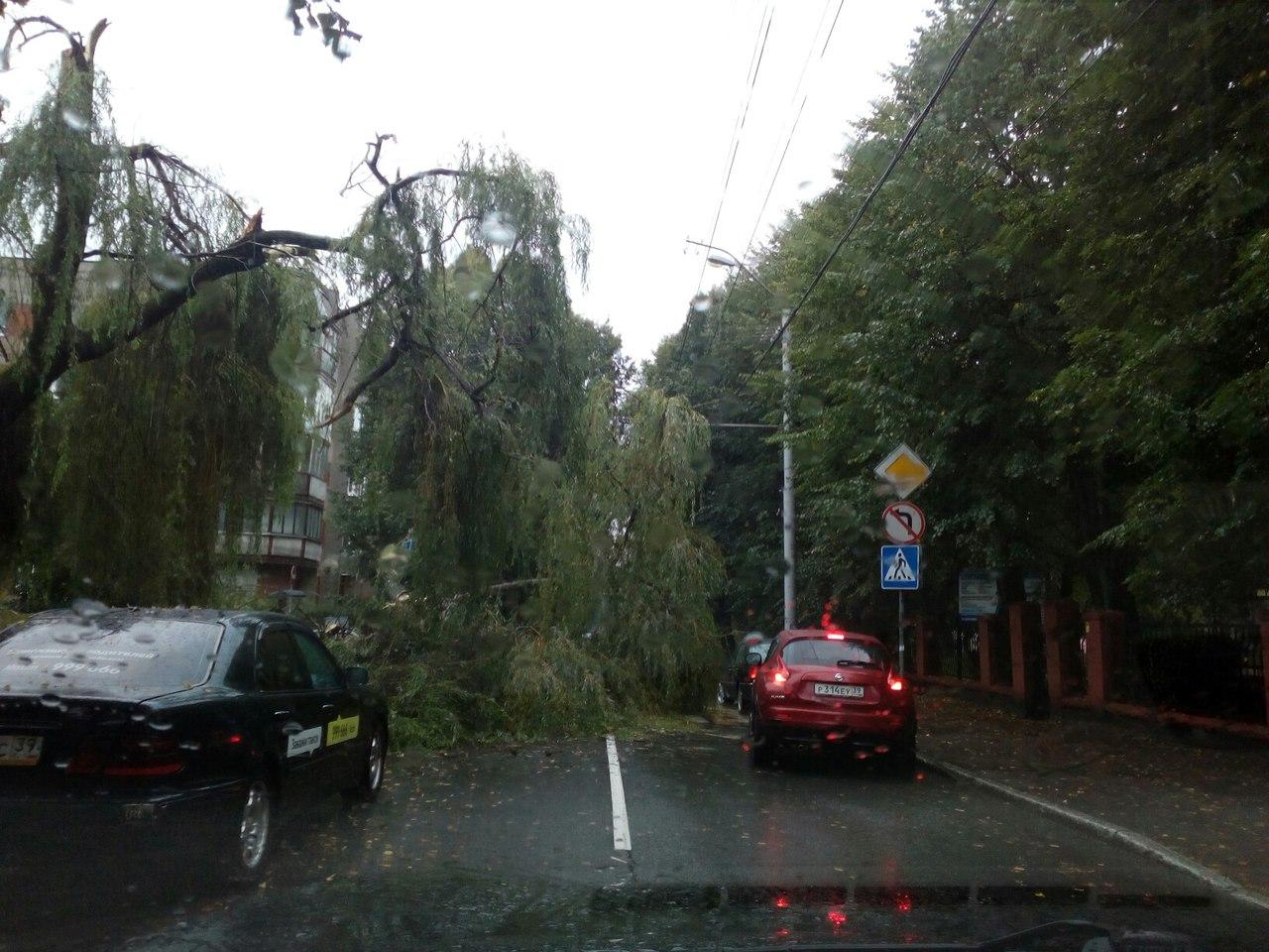 ВКалининградской области устраняют последствия шторма