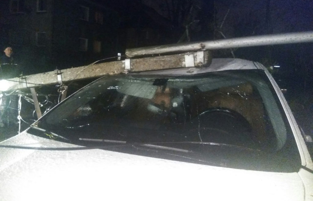 ВКалининградской области штормовой ветер повалил неменее 70 деревьев