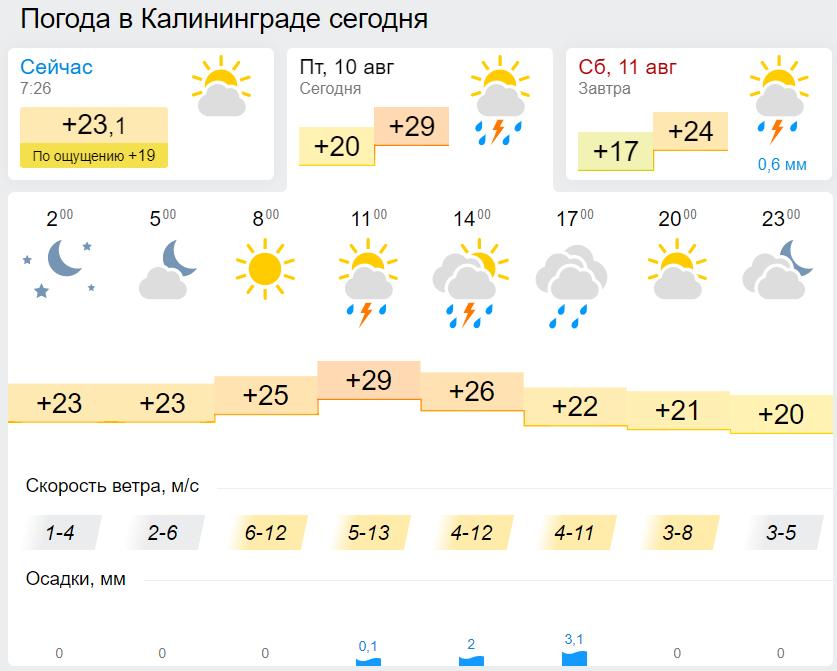Сейчас в Калининграде