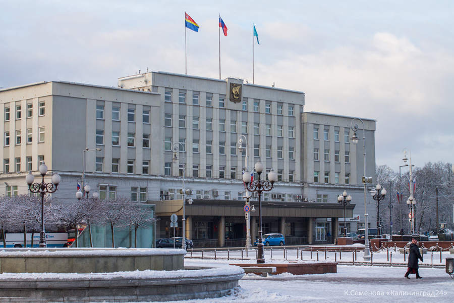 Калининград мэрия