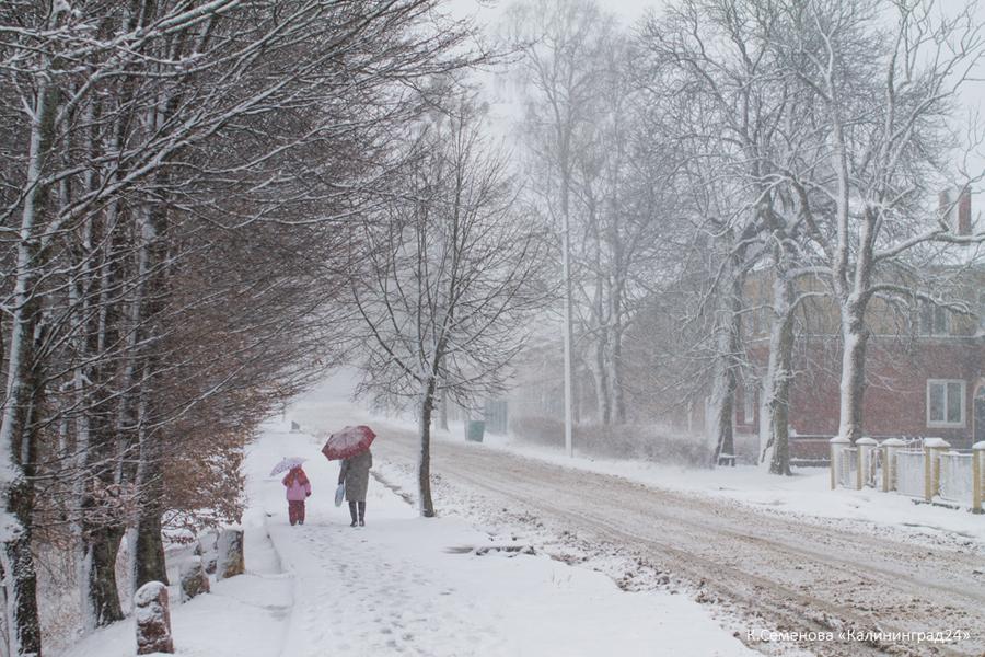 снег метель зима